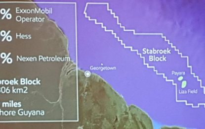 Guyana should not approve another Field Development Plan until gas master plan in place